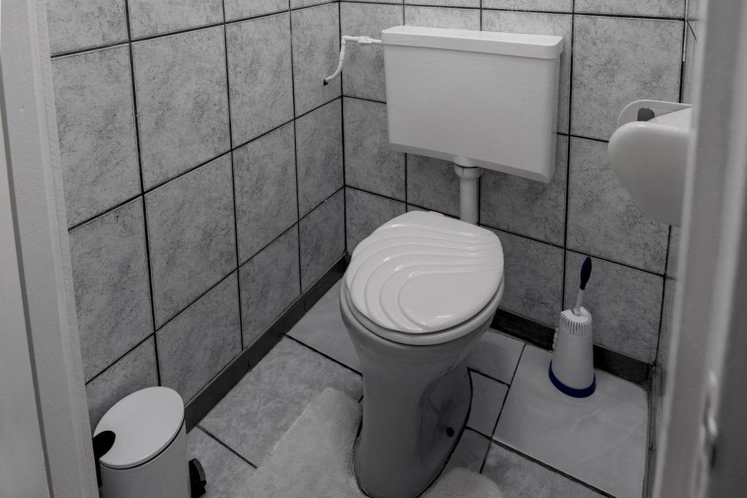 Vakantiehuis Suriname Toilet